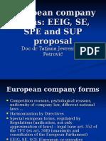 EU Company Law-EEIG SE SPE.ppt