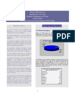 INE - Hoja informativa Censo 2002.pdf