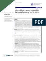 Evoluyion of Brain Genes