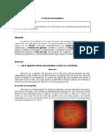 El Articulo Enciclopedico