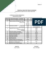 Indicativ Tehnico Econimic - DG C MURELOR