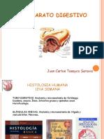 CLASE HISTOLOGIA. APARATO DIGESTIVO II.ppt
