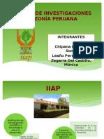 Instituto de Investigación de la Amazonia Peruana