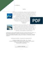 Esencias de Delfín y Ballena
