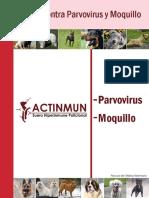 Actinmun Descripción General