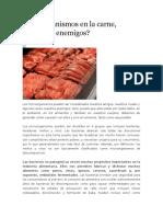 Microorganismos en La Carne