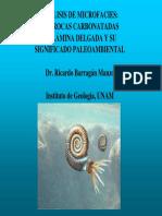 ejemplos de plataformas carbonatadas.pdf