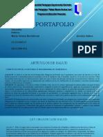 PORTAFOLIO ENVIAR