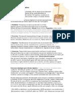 fisiologia 1 digestivo