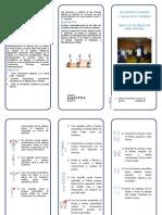 Documents.mx Triptico Pausas Activasdoc