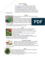 Plantas Medicinales 40 Con Imagenes
