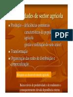 As_debilidades_de_sector_agricola1.pdf