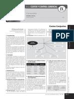 COSTO CONJUNTO 2016.pdf