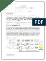 Práctica Inmunología