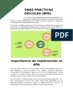 BUENAS PRÁCTICAS AGRÍCOLAS.docx