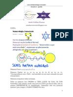Numerologia Consciente Apostila Encontro 2