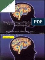 Cerebros Femenino y Masculino