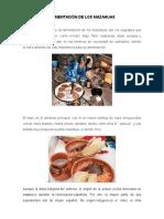 Alimentación de Los Mazahuas