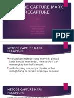 Metode Capture Mark Recapture