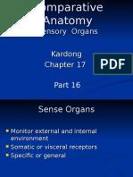 CA Section 16- Sensory Organs.2011
