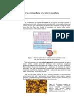 1 Unicelularidade e Multicelularidade