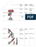 Muscles - origins, insertions and actions  .docx
