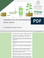 Dinamica Microbiana en Suelo