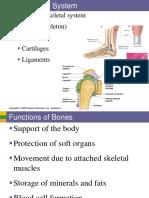Skeletal System.pdf