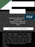 Manfaat Alga Coklat ( Sargassum Duplicatum J[1]