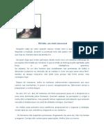 viriato-100412112740-phpapp02