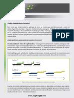 LeapfrogMining_ModDinamico.pdf