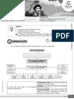 Guía 28 LC-21 ESTÁNDAR Identifico Comprendo y Analizo Información_PRO
