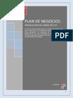 Plan de negocios CUY.pdf