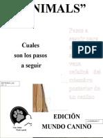 REVISTA.docx