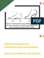 6 S4 PROCESO de Cueros y Calzado2016-2 UPN
