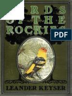 Birds of the Rockies Keyser Leander s Leander Sylv
