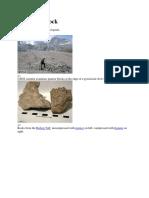 Pyroclastic Rock