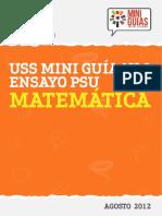 MINI_GUIA_MATEMATICA_N1_2013.pdf