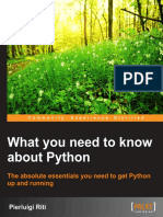 What You Need to Know About Python [eBook] - Pierluigi Riti