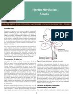 FS100ES.pdf