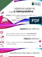 -PPT-Tríptico-Fisurado