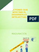 FACTORES QUE AFECTAN EL DESARROLLO INTELECTUAL.pptx
