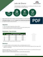 Ficha Mercado de Dinero