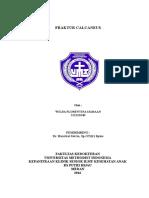 COVER FX CALCANEUS.doc