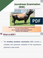 Breeding Soundness Examination for Bulls  - Dr S Raja