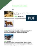Contoh Mutasi Pada Hewan Dan Tumbuhan2