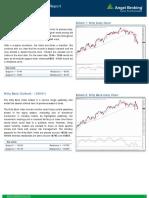 Premarket_Technical&Derivative_Angel_24.11.16 (1).pdf