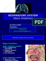 Respiratorysystemanatomy Dr 141112123534 Conversion Gate01