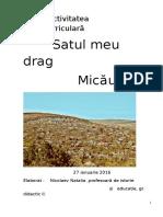0_satul_meu