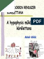 H1 10 Hypophysis Dr Molnar
